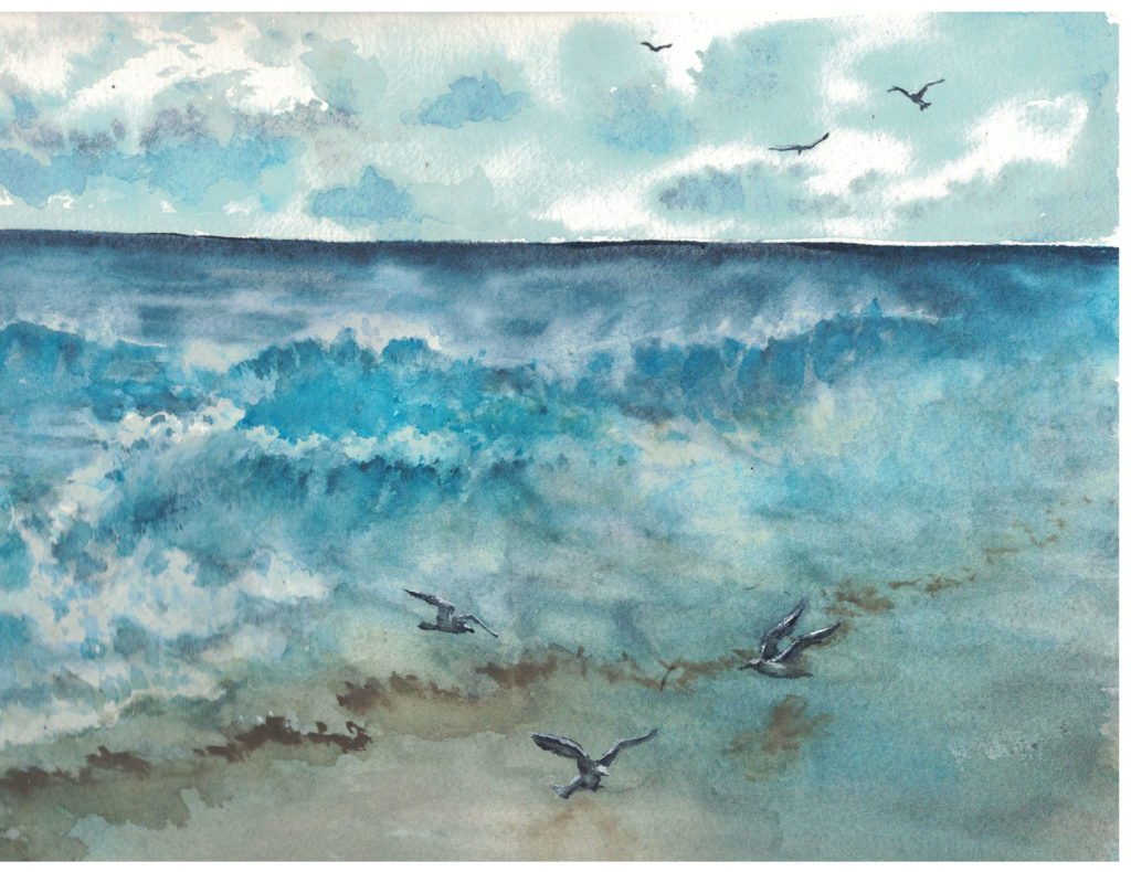 Waves and Birds