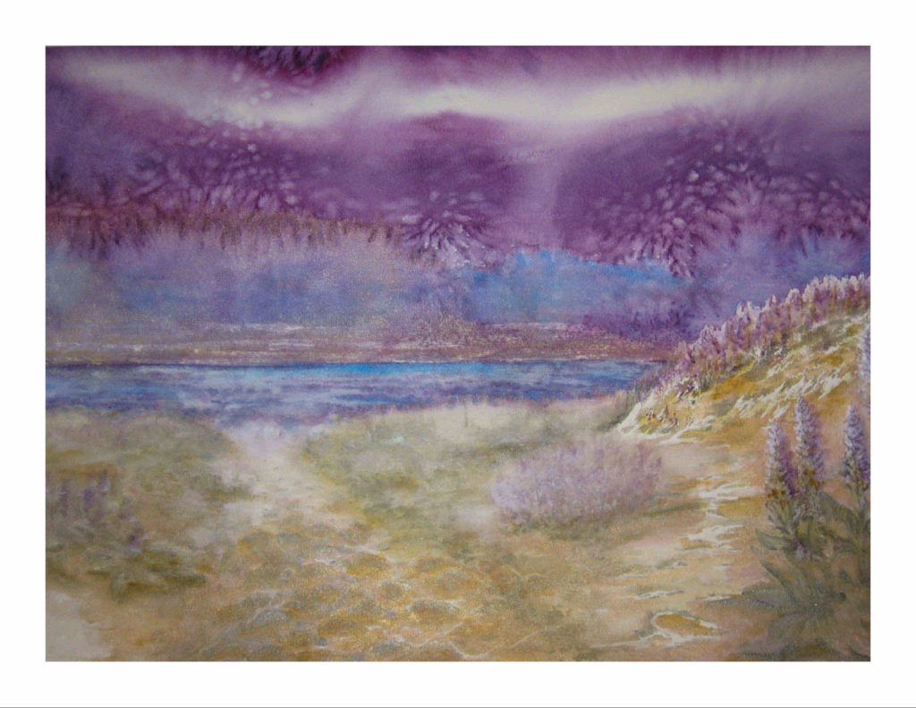 Purple Skies of Hurrican Michael - Beach Walk with with Lupine